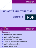 Chapter1.Introduction Ppt