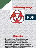 Normasbiosseguranca 120912140128 Phpapp01 1