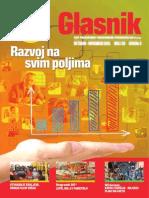 DIS - Glasnik30