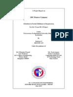 ABC Company Project Report