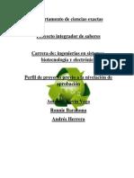 Proyecto Final-Tecnologia Reciclable