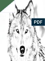 Imagen de Un Lobo-normal