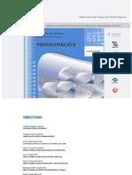 Programación Programa Estudios