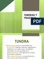 DIAPOS TUNDRAS