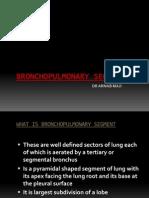 Bronco Pulmonary Segment