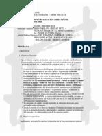 Direccion II _fuc_ - Programa 2013