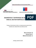 Diagnostico y Estrategia Hortalizas Dic2013