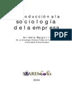 Libro Sociologia de La Empresa .2