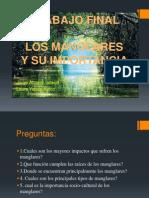 TRabajo Final Los Manglares (1)