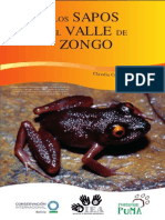 Los Sapos de Zongo Web