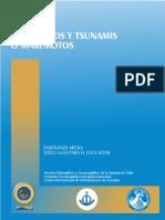 Terremotos y Tsunamis o Maremotos