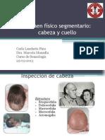 Cabeza Cuello Semio Seminario (1)