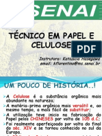 Papel e Celulose (Noção Geral)