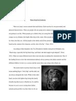 animal adoption 1