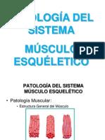 1. Músculo-esquelético