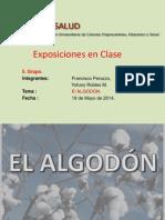 EL ALGODÓN AGROINDUSTRIA FINAL.ppt