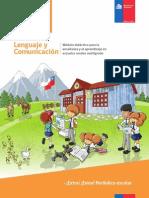 Guia_extra Extra Periodico Escolar