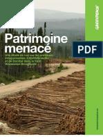 Rapport Patrimoine menacé