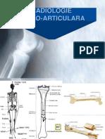 Curs Radiologie Os