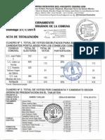 ACTA DE ESCRUTINIO PARLAMENTARIAS 2014 COMUNA RENACER DEL GIGANTE CHAMA SUR.pdf