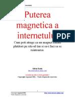 Puterea Magnetica a Internetului