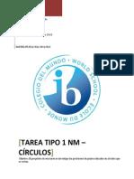 Tarea Tipo 1 NM Matemáticas Daniel Circulos Draft 3