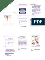 119303883 Leafleat Penyuluhan Pap Smear