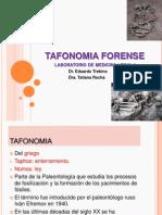 TAFONOMIA FORENSE.pptx