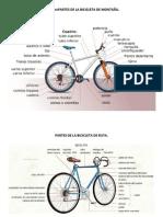 Partes de La Bicicleta de Montaña y Ruta