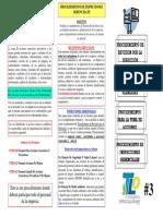 Pr Revision Direccion, Inspecciones Plan, Planes Accion, Gerenciales
