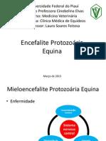 Encefalite Protozoaria Equina