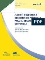 2 - Meinzen Et Al Accion Colectiva y Derechos de Propiedad