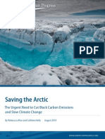 Saving the Arctic
