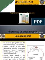 Control de Coccidiosis