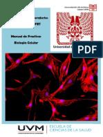 Manual de Practicas QFBT Biologia Celular