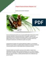 Libre de Gastritis ¿Cuáles Son Las Opciones Alternativas Para El Tratamiento de La Gastritis