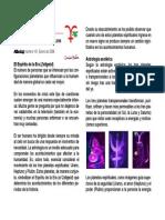 2. Astrología. Plutón en Capricornio. Huber. PDF