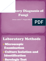 Wallachs Interpretation Of Diagnostic Tests 9th Edition Pdf