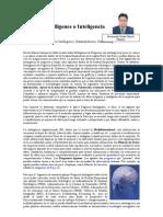 Artículo Business Intelligence o Inteligencia de Negocios
