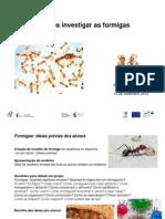 PPT_formigas_Eduardo_Sequeira_14_Set_2012.pdf