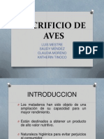 Exposicion Aves (1)