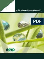 Biodiversidade Texto Gbo3 Resumo Executivo