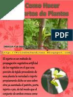 Como Hacer Injertos de Plantas Consejos Para Jardines
