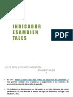 indicadores ambientales2013dIAPOSITIBVA