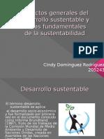 desarrollo sustentablen ppt