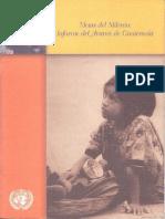 UNDP_gt_1Informe.pdf