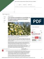 exportacion plantas medicionales