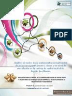 Producto 01 Actualizacion Cadena de Valor Sacha Inchi de Biocomercio Andino