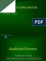 auditoraforense-100701103715-phpapp02