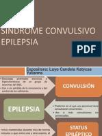 Sindrome Convulsivo.katycsa Yuliannaluyo Candela